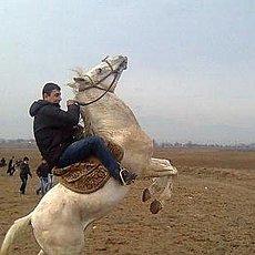 Фотография мужчины Rustamshik, 35 лет из г. Усть-Кут