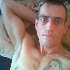 Фотография мужчины Roma, 37 лет из г. Ярославль